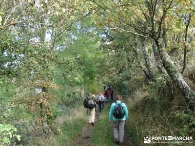 Las Médulas - Valle del Silencio - Herrería de Compludo;mapas senderismo gps mejor gps senderismo